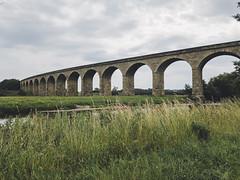Arthington Viaduct (Matthew-King) Tags: arthington viaduct leeds motley yorkshire river wharf