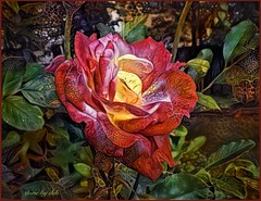 Rose Fantasy (done by deb) Tags: deepdreamgenerator ddg digitalflowerpainting digitalpainting digitalart vividcolor brightcolors