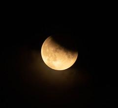 Partial Lunar Eclipse 16 July 2019 23:34 (Sculptor Lil) Tags: fullmoon moon canon700d london partialeclipse