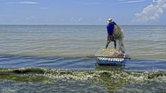 No mar sem peixe (Lucia Cysneiros) Tags: brasil pernambuco praia jangadeiro pescador praiademariafarinha