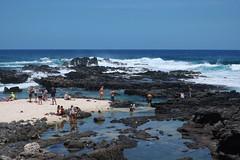 Ka'ena point tide pools (heartinhawaii) Tags: kaena kaenastatepark ocean coast pacificocean landscape seascape oahu westoahu nikond3300