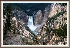 Lower Falls (Beangrau) Tags: lowerfalls waterfall yellowstonenationalpark nikond500 tqmron150600 landscape nationalpark