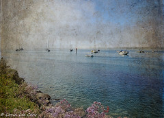 Sun and Fog (lorinleecary) Tags: manipulatedimage flowers water harbor fog boats digitalart textured clouds