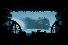 190716-M-WB494-1006 (U.S. Pacific Fleet) Tags: 31stmarineexpeditionaryunit battalionlandingteam 2ndbattalion 1stmarines combatlogisticsbattalion31 marinemediumtiltrotorsquadron265reinforced commandelement groundcombatelement logisticscombatelement aviationcombatelement iiimarineexpeditionaryforce amphibiousassaultshipusswasplhd1 amphibioustransportdockussgreenbaylpd20 docklandingshipussashlandlsd48 7thfleet 31stmeu blt21 clb31 vmm265rein iiimef lhd1 lpd20 lsd48 okinawa japan marinecorps indopacific ready partnered lethal marineairgroundtaskforce magtf mv22bospreytiltrotoraircraft f35blightningii ch53esuperstallionhelicopter ah1zviperhelicopter uh1yhvenomhelicopter isaaccantrell talismansaber talismansabre lcac landingcraft aircushion coralsea
