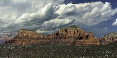 beautiful red rock of Sedona Arizona (TAC.Photography) Tags: redrock sedona sedonaarizona arizona allofarizonaphotography arizonapassages arizonahighways