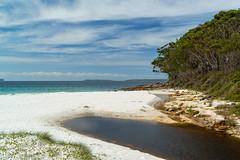 Greenfield's Beach ll (fate atc) Tags: australia beach greenfieldsbeach jervisbay nsw shoalhaven vincentia water trees whitesand