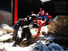 He Is Really Pissed! (RandomWatts) Tags: acba action figure photography toy artistry articulated comic book art marvel comics venom scarlet spider spiderman man