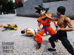 Wrath of the Dragon (RandomWatts) Tags: acba action figure photography toy artistry articulated comic book art marvel comics street figher ryu bruce lee iron fist martial arts goku dbz dragon ball