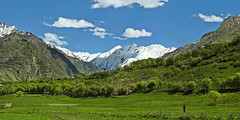 Nothing forbids to lose yourself here.... (Lopamudra !) Tags: lopamudra lopamudrabarman lopa landscape ladakh jk india clouds cloud sky skyscape meadow field green tree trees verdant nature mountain mountains heaven paradise peak peace peaks himalaya himalayas highaltitude highland suru suruvalley valley vale sunshine sunlight wilderness silence solitude beauty beautiful picturesque