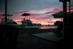 _DSC7689 (Big B Photography) Tags: aruba