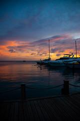 _DSC7673 (Big B Photography) Tags: aruba