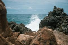 _DSC7573 (Big B Photography) Tags: aruba