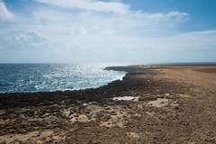 _DSC7356 (Big B Photography) Tags: aruba