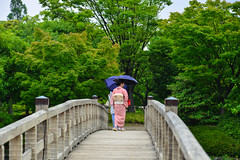 Women in kimono walking on wooden bridge (phuong.sg@gmail.com) Tags: asia asian attractive background beautiful beauty bridge chinese color colorful costume culture cute dress fall fashion female geisha girl green japan japanese kimono kyoto lady leaf nature orange outdoor park people person portrait pretty red sightseeing summer sunlight sunrise tokyo tradition traditional travel tree umbrella wearing woman yellow young