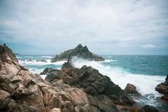 _DSC7609 (Big B Photography) Tags: aruba