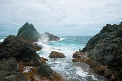 _DSC7585 (Big B Photography) Tags: aruba