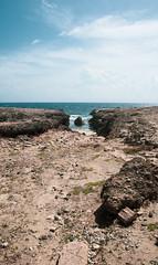 _DSC7404 (Big B Photography) Tags: aruba