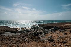 _DSC7300 (Big B Photography) Tags: aruba