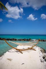 _DSC7009 (Big B Photography) Tags: aruba