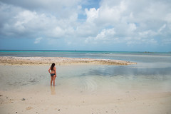 _DSC6927 (Big B Photography) Tags: aruba