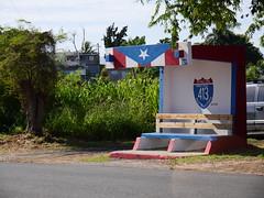 P1000364 (waldy5897) Tags: 413 colors lumix rincon bandera gx9 puertorico road