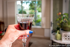 20190716Cheers29683-Edit (Laurie2123) Tags: fujixt2 fujinon1855mm laurieturnerphotography laurietakespics laurie2123 odc ourdailychallenge apartofme home offcameraflash selfportrait wine