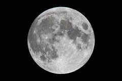 Moon (Kyle@TW) Tags: moon tamron a022 150600 150600mm canon