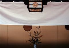 Pic0013a (exposurecontemplation.wordpress.com) Tags: togo shrine shibuya tokyo japan film nikon em 50mm 12 ais fuji superia 400