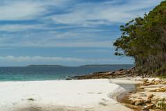 Greenfield's Beach lll (fate atc) Tags: australia beach greenfieldsbeach jervisbay nsw shoalhaven vincentia water trees whitesand