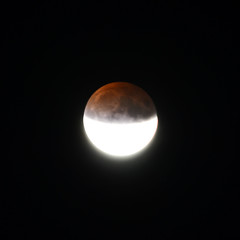 Half Blood Buck Full Moon, July 2019 (Inner Vision Productions) Tags: july fullmoon moon lunar eclipse partial halfblood buck night crater surface detail zoom sharp focus focussed nikon d5200 55300mm telephoto shadow contrast light bright geology geography meteor impact summer 2019 innervision photography mattblythe isleofwight sandown sky longexposure