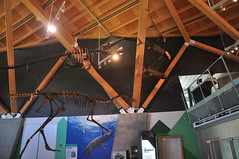 20190712-DSC_0516 (Beothuk) Tags: wembely alberta the philip j currie dinosaur museum friday july 12 2019