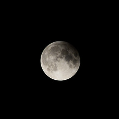 Partial Lunar Eclipse (Half Blood Full Moon) (Inner Vision Productions) Tags: july fullmoon moon lunar eclipse partial halfblood buck night crater surface detail zoom sharp focus focussed nikon d5200 55300mm telephoto shadow contrast light bright geology geography meteor impact summer 2019 innervision photography mattblythe isleofwight sandown sky