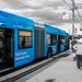 The Blue Compass Card Bus