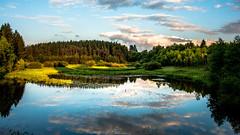 Le lac de Butgenbach (musette thierry) Tags: lac musette thierry d800 nikon paysage eau bleu nuage été nature landscape belgique belgium