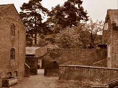 Within these Walls (Maria .... on here to learn and be inspired.) Tags: yard history workhouse walls trees sepia windows