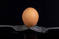 Egg sitting on the crossed forks above black background (wuestenigel) Tags: egg utensil reflection abstract hope dinner chicken design cross isolated protein metal single silver danger kitchen concept idea cutlery diet one white hand breakfast hen healthy balance food cooking organic care eating fork lunch holding silverware steel stack meal shell