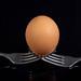 Egg sitting on the crossed forks above black background