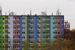 . coloureyes (. ruinenstaat) Tags: tumraneedi ruinenstaat platzderaltensteine frankfurt stadt architektur gestaltung wohnraum lebensraum urban city town siedlung fassade