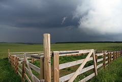 Aubrac (Yvan LEMEUR) Tags: aubrac aveyron lozère pastoralisme ciel orage cieldorage météorologie nuages extérieur pluie france paysage ambiance landscape immensité solitude