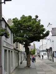 Kirkwall, Orkney (iain.tay) Tags: kirkwall orkney scotland