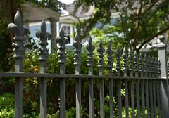 Fleur-ishing Fence (BKHagar *Kim*) Tags: bkhagar fence metal iron forged fleurdelis neworleans nola la uptown