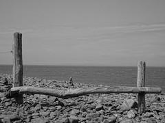Porlock Weir (Balticson) Tags: porlock porlockweir rocks pebbles beach coast wood sea somerset westsomerset
