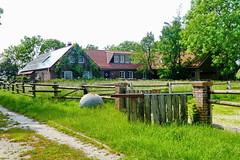 Hinterm Deich (antje whv) Tags: norddeutschland northgermany grün landschaft landscape weg path zaun fence haus house