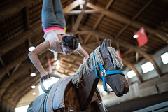 CVI Bern (endorphin75) Tags: pferdezentrum cvi npz fei schweiz acrobatics competition center gymnastics bern tournament national competitive reitsport voltigieren sports horseback equestrian vaulting voltige switzerland 2019 international horse