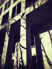 20190305-0048 (www.cjo.info) Tags: snapseed snapseedgrungefilter architecture building flora iphoneography modernbuilding plant shadow tree urban