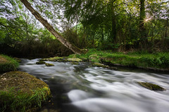 (Nicolas Pluquet) Tags: céou dordogne rivière eau paysage arbres sunset soleil sony ilce7m2 a7ii voigtlander