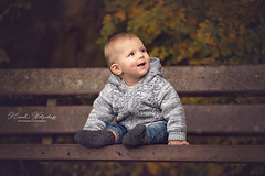 First time sitting (nicolewitschass) Tags: baby boy fall autumn bench jacket child kid momtographer sitting cute smiling nikon d750 outside outdoors warm tones brown leaves grey babyboy 7 months photoshop editing
