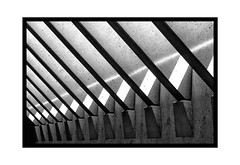 simple black diagonal stripes (Armin Fuchs) Tags: arminfuchs lavillelaplusdangereuse würzburg universityofmusic mehrzweckraum diagonal stripes graphic light shadows concrete