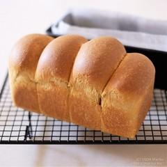 ブランパン 20190716-DSCT9369 (2) (marikobiz) Tags: plum 自家製酵母 ブランブレッド branbread ブラン ふすまパン