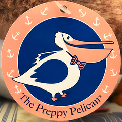 The Preppy Pelican (Timothy Valentine) Tags: 0719 label bird 2019 home squaredcircle eastbridgewater massachusetts unitedstatesofamerica